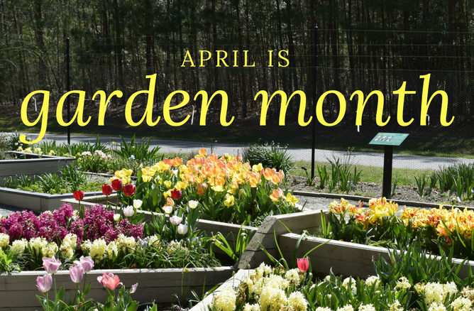 April is Garden Month